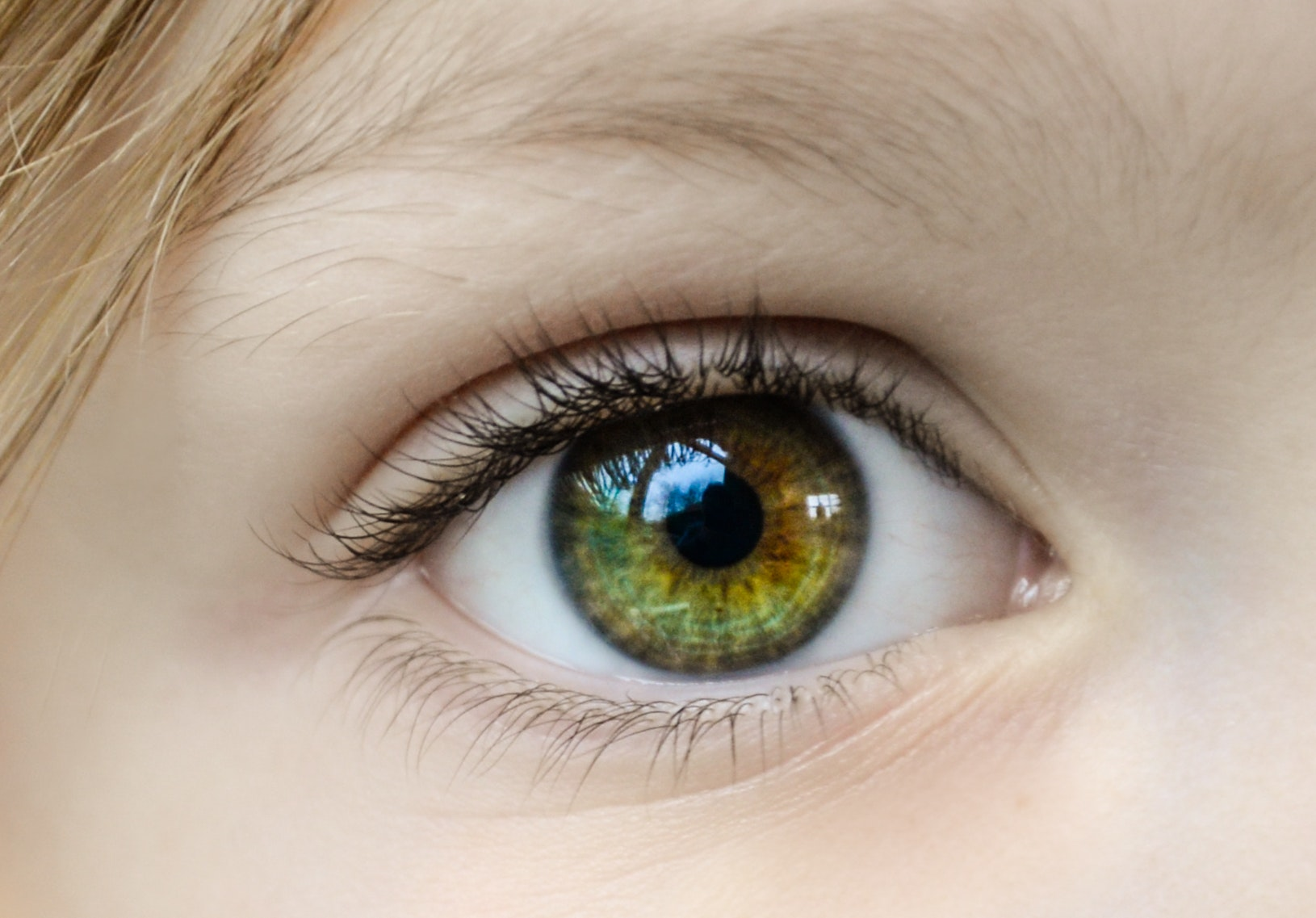 Close Up Eye Eyeball 862122 Mark Davis Optician